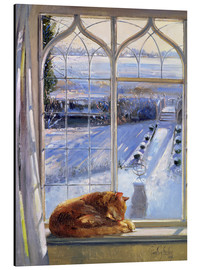 Aluminium print  Cat in the Window - Timothy Easton