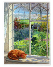 Premium poster  Cat in the window in summer - Timothy Easton