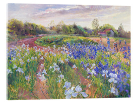 Acrylic print  Field of flowers - Timothy Easton