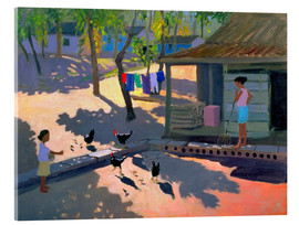 Acrylic print  Hens and Chickens, Cuba, 1997 - Andrew Macara