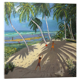 Acrylic print  Palm trees, Clovelly beach, Barbados - Andrew Macara