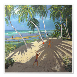 Premium poster  Palm trees, Clovelly beach, Barbados - Andrew Macara