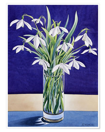 Premium poster  Snowdrops - Christopher Ryland