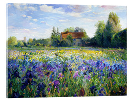 Acrylic print  Field of flowers in the sunset - Timothy Easton