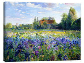 Canvas print  Field of Flowers in the Sunset - Timothy Easton