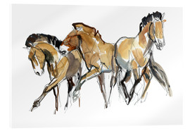 Acrylic glass  Herd of horses - Mark Adlington