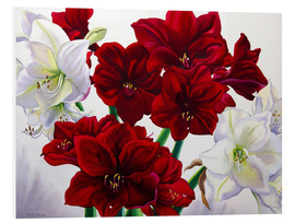 Foam board print  Red and white Amaryllis, 2008 - Christopher Ryland