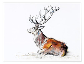 Premium poster Lying Stag