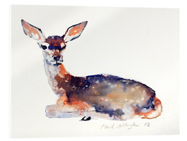 Acrylic print  Lying deer - Mark Adlington