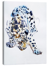 Canvas print  Arabian Leopard - Mark Adlington