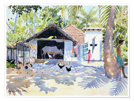 Premium poster  The Backwaters, Kerala - Lucy Willis
