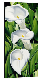Catherine Abel - Lily