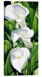 Canvas  Lily - Catherine Abel