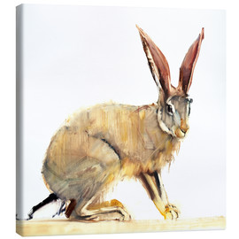 Canvas print  Hare - Mark Adlington