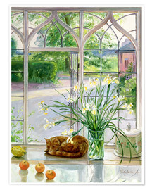 Premium poster  Sleeping Cat in the Window - Timothy Easton