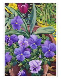 Premium poster Flower pots with pansies, 2007