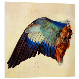 Foam board print  Wing of a blue roller - Albrecht Dürer