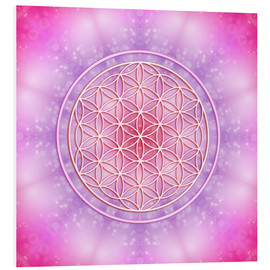 Foam board print  Flower of life - unconditional love - Dolphins DreamDesign