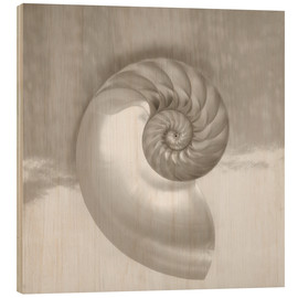 Wood print  Nautilus shell - Kate & Tom Turning & Gibson
