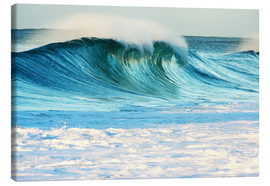 Canvas  Waves in Hawaii - Vince Cavataio