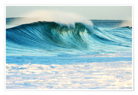 Premium poster  Waves in Hawaii - Vince Cavataio