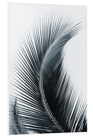 Foam board print  Palm fronds - Larry Dale Gordon