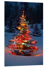Foam board print  Christmas tree in snow - Carson Ganci