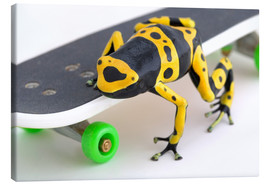 Canvas print  Frog On A Skateboard - Corey Hochachka