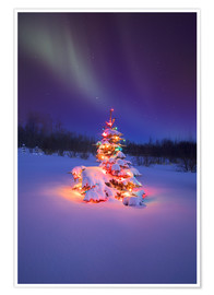Premium poster  Christmas tree and Northern Lights - Carson Ganci