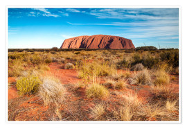 Premium poster Ayers Rock in the evening