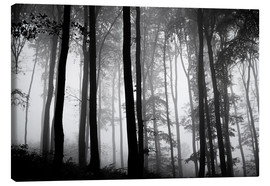 Canvas  Foggy Woods - The Irish Image Collection