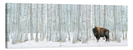Canvas print  Buffalo Standing In Snow Among Poplar Trees - Richard Wear