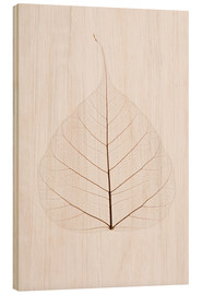 Wood print  Transparent Leaf - Kelly Redinger