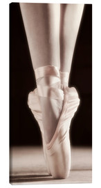 Canvas print  Ballet Shoes - Don Hammond