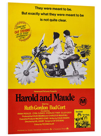 Foam board print  Harold and Maude