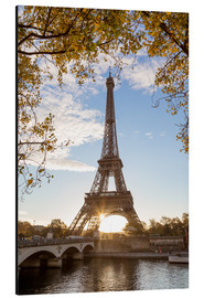 Aluminium print  Jena bridge and Eiffel tower in autumn, Paris, France - Matteo Colombo