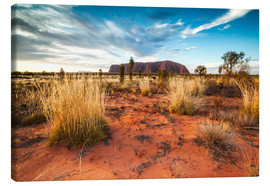 Canvas  Red Desert at Ayers Rock - Matteo Colombo