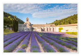 Premium poster Famous Senanque abbey with lavender field, Provence, France