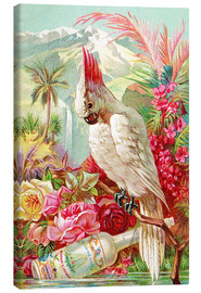 Canvas print  Cocktail Cockatoo - Advertising Collection