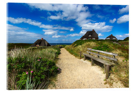 Acrylic print  Sylt dunes and sea - Filtergrafia