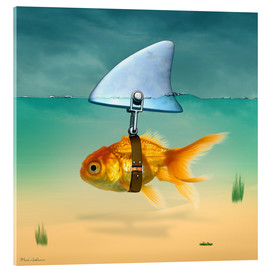 Acrylic glass  gold fish - Mark Ashkenazi
