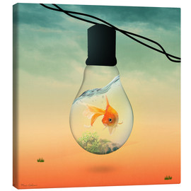 Canvas print  lights fish B - Mark Ashkenazi