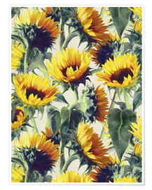 Premium poster  Sunflowers forever - Micklyn Le Feuvre