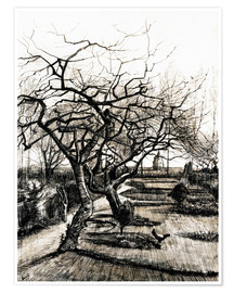 Premium poster  The Parsonage Garden at Nuenen in Winter - Vincent van Gogh
