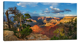 Canvas  Grand Canyon with knotty pine - Michael Rucker