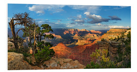 Foam board print  Grand Canyon with knotty pine - Michael Rucker