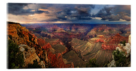 Acrylic print  Grand Canyon View - Michael Rucker