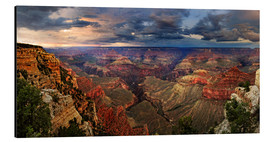 Aluminium print  Grand Canyon View - Michael Rucker