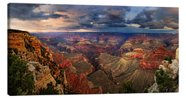Canvas  Grand Canyon View - Michael Rucker