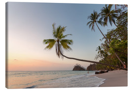 Canvas  Palm tree and exotic sandy beach at sunset, Costa Rica - Matteo Colombo